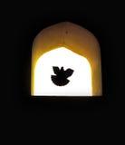 Duva av hopp som flyger till och med fönster Royaltyfri Fotografi