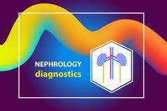 Begreppsbild för diagnostik nephrology, urology, urogenital sy stock illustrationer