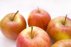 begreppsmässig bild för äpplen royaltyfria foton