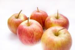 begreppsmässig bild för äpplen arkivbilder