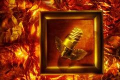 Begreppsmässig bild med den spiral lampan Royaltyfria Bilder