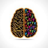 Begreppsmässig idékonturbild av hjärnan med rupiesymbol Fotografering för Bildbyråer