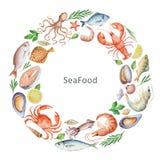 Begreppsmässig illustration för vattenfärg av skaldjur och kryddor Fotografering för Bildbyråer
