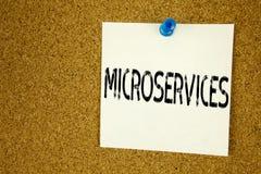 Begreppsmässig inspiration för överskrift för handhandstiltext som visar Microservices Affärsidéen för Micro servar skriftligt på Royaltyfri Fotografi