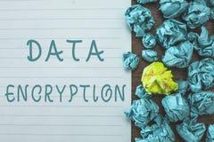 Begreppsmässig kryptering för data för handhandstilvisning Symmetrisk nyckel- algoritm för affärsfototext för de kodande elektron royaltyfria foton