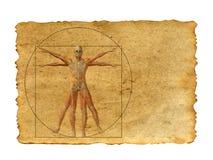Begreppsmässig vitruvian människokroppteckning på gammal pappers- bakgrund royaltyfri bild