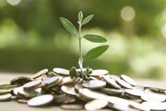 begreppsmässig wellness för pengar för ekonomifinansbild Fotografering för Bildbyråer
