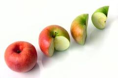 begreppsmässiga äpplen Arkivbild