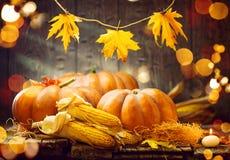 Begreppsmässigt skörddiagram med olika grönsaker på fältet Autumn Thanksgiving pumpor Royaltyfri Bild