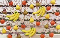 Begreppsmässigt träd med olika frukter Bananer apelsiner, päron, på ett dekorativt träd Bakgrund från olika frukter fotografering för bildbyråer