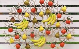 Begreppsmässigt träd med olika frukter Bananer apelsiner, päron, på ett dekorativt träd Bakgrund från olika frukter royaltyfri foto