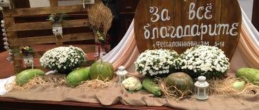 Begriffserntegraphik mit verschiedenem Gemüse auf dem Feld Lizenzfreie Stockfotos
