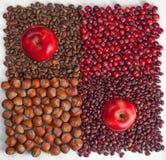 Begriffserntegraphik mit verschiedenem Gemüse auf dem Feld Lizenzfreie Stockfotografie