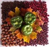 Begriffserntegraphik mit verschiedenem Gemüse auf dem Feld Stockfoto