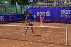 Begu - Bogdan team Stock Photos