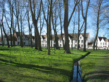 Beguinage in Bruges. White houses of Beguinage in Bruges, Belgium stock photography