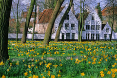 The beguinage of Bruges. Beguinage serenity of Bruges in spring Stock Photos