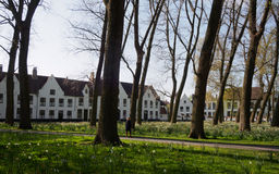 Beguinage in Bruges, Belgium Royalty Free Stock Image
