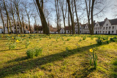 Beguinage in Bruges, Belgium Stock Photos