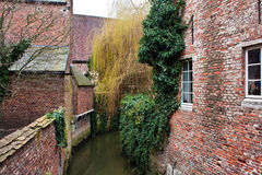 Beguinage of Leuven Stock Photo