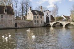 Beguinagen eller Begijnhofen av Brugge Fotografering för Bildbyråer