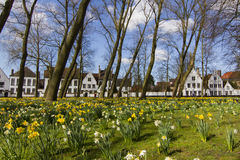 Beguinagen eller Begijnhofen av Brugge Royaltyfri Fotografi