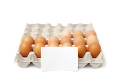 Behälter der Eier Lizenzfreies Stockfoto