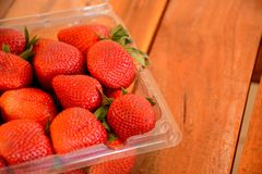 Behälter Erdbeeren Lizenzfreie Stockfotografie