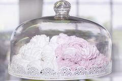 Behälter für die Speicherung des Kuchenbehälters mit den weißen und rosa Eibischen stockbild