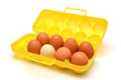 Behälter für Eier Stockbild