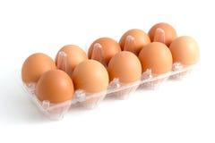 Behälter für Eier im klaren Plastik auf weißem Hintergrund Stockbild