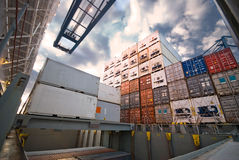 Behälter-Fracht-Operation im Hafen Stockfoto