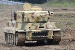 Behälter-Tiger Stockbild