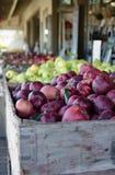 Behälter von frischen ausgewählten Äpfeln Stockfotos