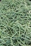Behälter von grünen Bohnen Stockbilder