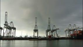 BehälterFrachtschiffe stock footage
