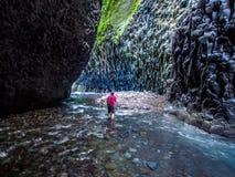 Behå de la Plaine flod i La Reunion Island royaltyfria foton