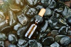 Behållare för skönhetsmedelflaskpacke på naturlig bakgrund arkivbild
