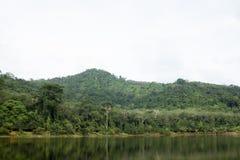 Behållare med berg och djungeln i baksidan royaltyfri foto