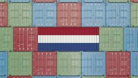 Behållare med flaggan av Nederländerna Holländsk släkt animering 3D för import eller för export stock video
