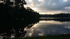 Behållare - solnedgångar Royaltyfri Foto