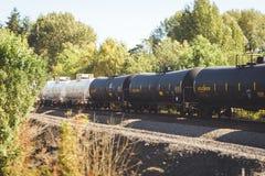 Behållarebilar på en järnväg i träd Arkivfoto