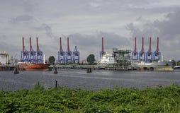 behållarehamburg port Royaltyfri Bild