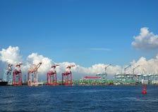 Behållarekranar på Kaohsiung port Arkivbild