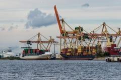 Behållareomlastning på port Arkivbilder