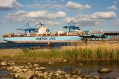 Behållareship Eleonora Maersk i Gdansk Polen Royaltyfria Bilder