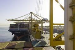 Behållareskepp i port av Dubai Royaltyfri Bild