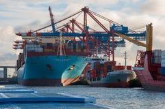 Behållareskepp Marit Maersk och eller förlagematare i port av Hamburg fotografering för bildbyråer