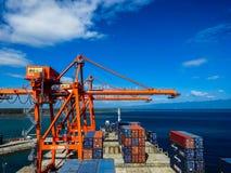 Behållareskyttel tillsammans med i Panabo, port av Davao, Filippinerna royaltyfria bilder