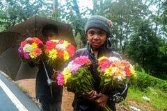 Behaga tar några blommor och ger oss någon pics fotografering för bildbyråer